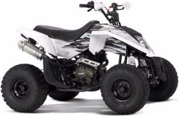 Zanella FX 150 MadMax ATV vehicle
