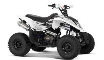 Zanella FX 250 MadMax ATV vehicle