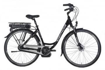 Gepida REPTILA 1000 DUTCH electric bike