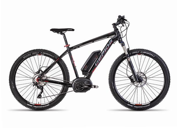 Gepida ASGARD 1000 MTB electric bike