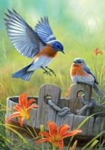 Buffalo Games Bluebirds 300 Pieces Large Puzzles