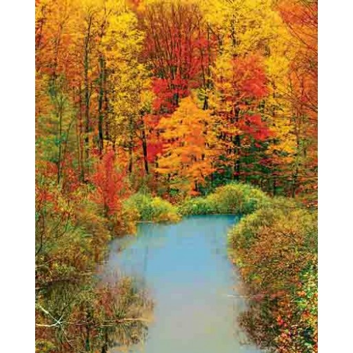Springbok Autumn Reflection 1500 Piece Puzzles