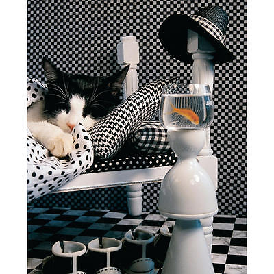 Springbok Checkerboard Cat 1000 Piece Puzzles