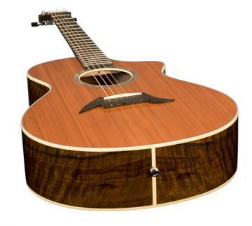 Breedlove Focus SE Walnut guitar