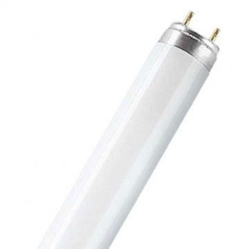 OSRAM T8 58W 1500MM Daylight Tube