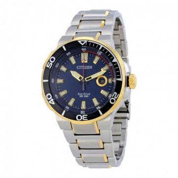 Citizen Eco-Drive Endeavor Two Tone Blue Dial Watch