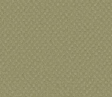 Beaulieu Inspiring II - Soft Sage Carpet