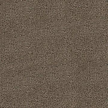Beaulieu Sandhurt - Iced Tead Carpet