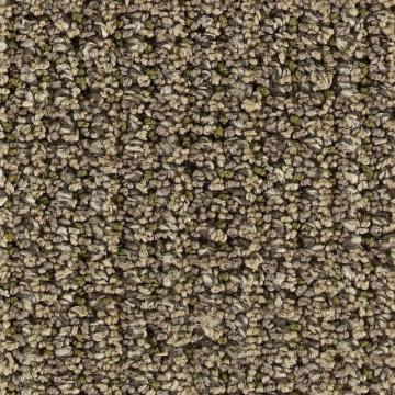 Beaulieu Polarity - Glue Carpet