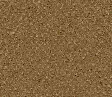 Beaulieu Inspiring II - Pecan Shell Carpet