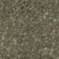 Beaulieu Aura - Envy Carpet