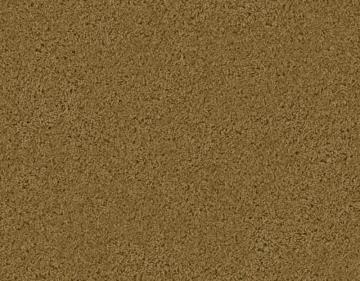 Beaulieu Enticing II - Pecan Shell Carpet