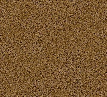 Beaulieu Pleasing I - Buckskin Carpet