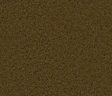 Beaulieu Enticing I - Deep Canyon Carpet
