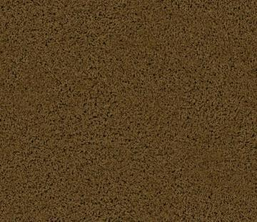 Beaulieu Enticing I - Buckskin Carpet