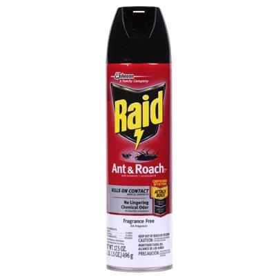 SC Johnson Raid Ant & Roach Killer, 17.5-oz. Aerosol