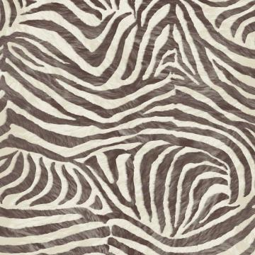 Graham & Brown Zebra Brown/Beige Wallpaper