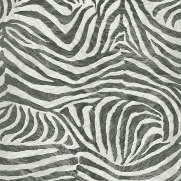 Graham & Brown Zebra Black/White Wallpaper