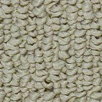 Beaulieu Shebang - Squash Skin Carpet - Per Sq. Feet