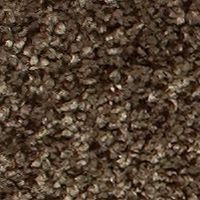 Beaulieu Lambent - Root Carpet - Per Sq. Feet