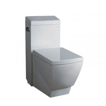 Fresca Apus 1-Piece 1.6 GPF Single Flush Elongated Bowl Toilet with Soft Close Seat