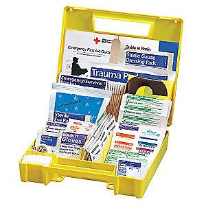 American Red Cross First Aid Kit,  Plastic Case Material, Vehicle, 10 People Served