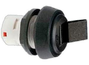 Rafi Rocker button switch